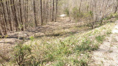 Cumberland Gap Residential Lots & Land For Sale: King Bend Rd