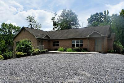 Sevier County Single Family Home For Sale: 442 N Rogers Rd