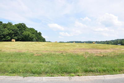 New Market Residential Lots & Land For Sale: 1976 River Mist Circle