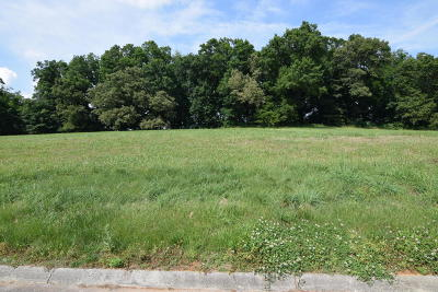 New Market Residential Lots & Land For Sale: 1995 River Mist Circle