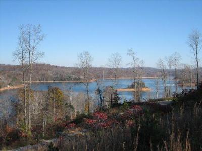 Residential Lots & Land Closed: 139 Suncrest Cove