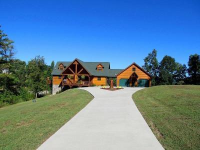 Meigs County, Rhea County, Roane County Single Family Home For Sale: 1460 Indian Shadows Drive
