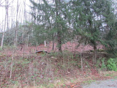 Residential Lots & Land For Sale: 387 Steve Brown Rd