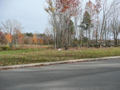 Residential Lots & Land For Sale: Red Wing