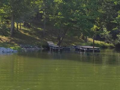 Meigs County, Rhea County, Roane County Residential Lots & Land For Sale: Lot 98 Bluegreen Way