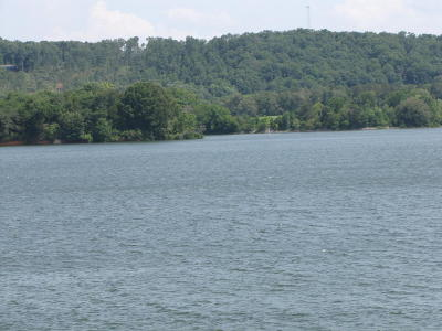 Meigs County, Rhea County, Roane County Residential Lots & Land For Sale: East Shore Drive