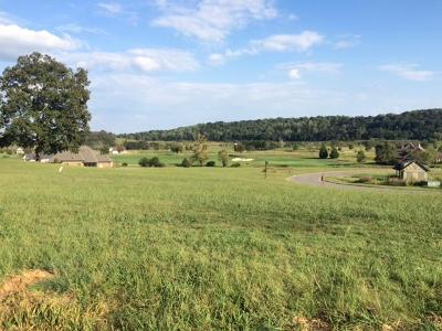 Blount County, Loudon County, Monroe County Residential Lots & Land For Sale: 7725 Persimmon Ridge