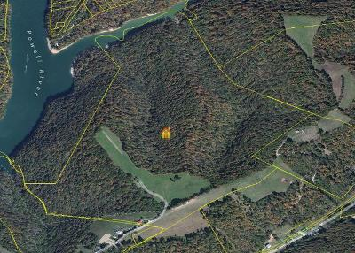 New Tazewell Residential Lots & Land For Sale: 793 Weaver Ridge Rd