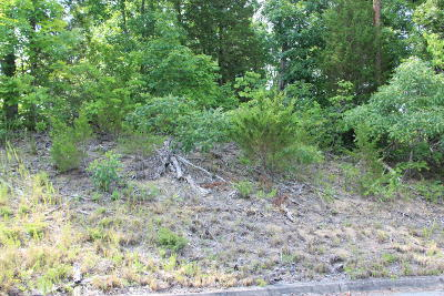 Sevierville Residential Lots & Land For Sale: Lot 2 Harbor Point Dr