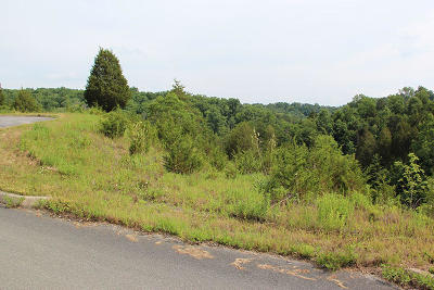 Sevierville Residential Lots & Land For Sale: Lot 12 Harbor Point Dr