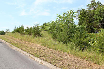 Sevierville Residential Lots & Land For Sale: Lot 16 Harbor Point Dr