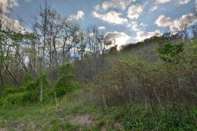 Heiskell Residential Lots & Land For Sale: L-9 Wolf Peak Lane