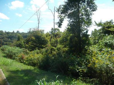 Heiskell Residential Lots & Land For Sale: L-4 Wolf Peak Lane