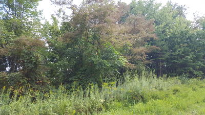 Pioneer Residential Lots & Land For Sale: Campbell Highlands Drive