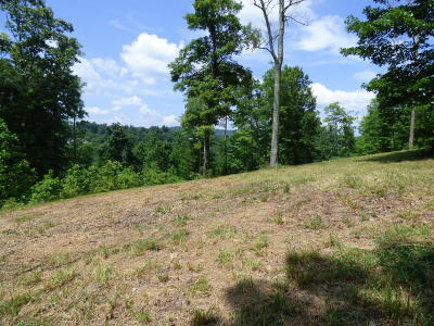 Norris Crest Residential Lots & Land For Sale: Smoky Pointe Lots 66 & 67