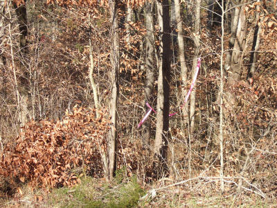 Sharps Chapel TN Residential Lots & Land For Sale: $23,900