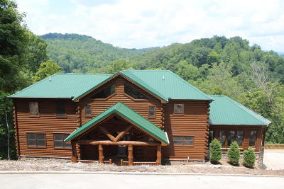 Campbell County, Claiborne County, Union County Single Family Home For Sale: 122 Harness Lane
