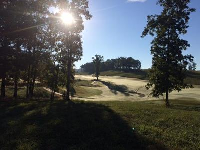 Lenoir City Residential Lots & Land For Sale: 898 Gallery Court