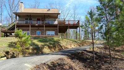 Tellico Plains Single Family Home For Sale: 253 Sourwood Lake Rd Rd