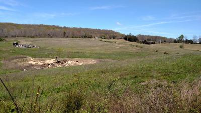 Residential Lots & Land For Sale: Hwy 131