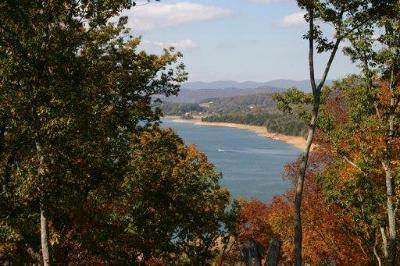 Russellville, Whitesburg Residential Lots & Land For Sale: 2029 Turners Landing