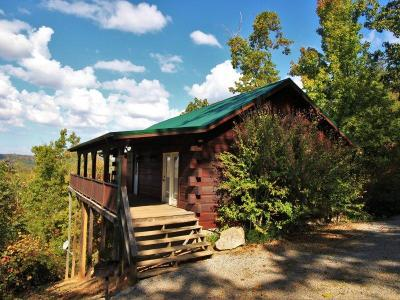 Tellico Plains Single Family Home For Sale: 108 Valley View