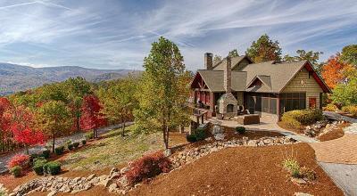 Gatlinburg Single Family Home For Sale: 1140 Lightning Bug Way
