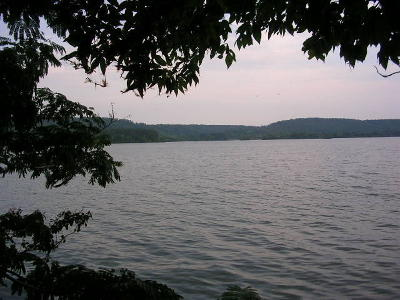 Meigs County, Rhea County, Roane County Residential Lots & Land For Sale: Lot 119 E. Shore Dr.