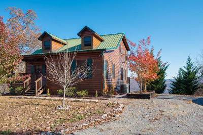 Claiborne County Single Family Home For Sale: 119 Cloverdale Lane