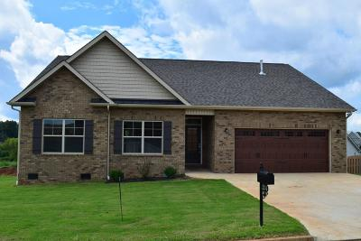 Sevierville Single Family Home For Sale: 2214 Frewin Court