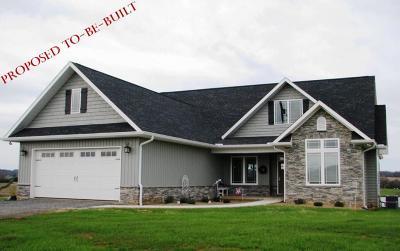 Loudon Single Family Home For Sale: 208 Amega Trace