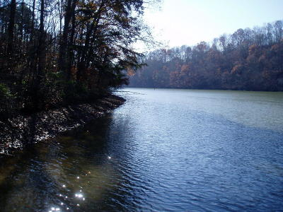 Meigs County, Rhea County, Roane County Residential Lots & Land For Sale: Lot 56 The Battery