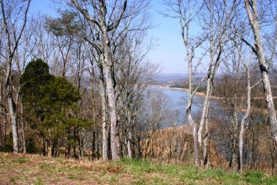 Russellville, Whitesburg Residential Lots & Land For Sale: 2013 Turners Landing