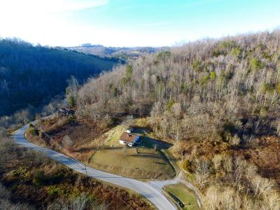 New Tazewell Single Family Home For Sale: 1010 Mountain Rd