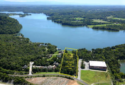 Alcoa, Friendsville, Greenback, Knoxville, Louisville, Maryville, Lenoir City, Vonore Residential Lots & Land For Sale: 910 Osprey Point Lane