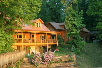 Meigs County, Rhea County, Roane County Single Family Home For Sale: 1 Old Bowman Bend Drive