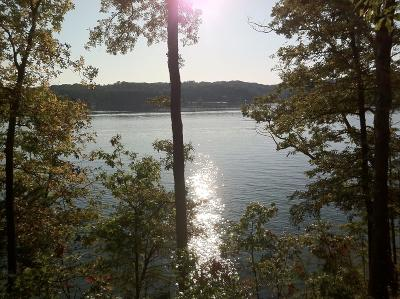 Blount County, Knox County, Loudon County, Monroe County Residential Lots & Land For Sale: 1212 Shadow Hill Drive