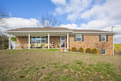 Hamblen County Single Family Home For Sale: 1701 Alpha Valley Home Rd
