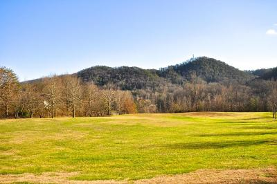 Townsend TN Residential Lots & Land For Sale: $69,900