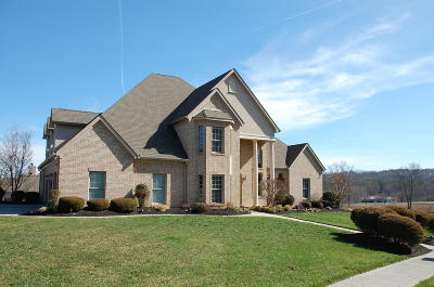 Lenoir City Single Family Home For Sale: 200 Oak Chase Blvd