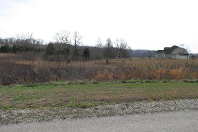 Meigs County, Rhea County, Roane County Residential Lots & Land For Sale: 502 W Shore Drive