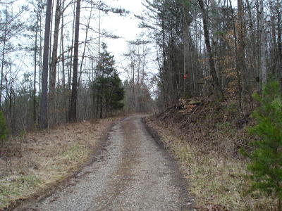 Alcoa, Friendsville, Greenback, Knoxville, Louisville, Maryville, Rockford, Sevierville, Seymour, Tallassee, Townsend, Walland, Lenoir City, Loudon, Philadelphia, Sweetwater, Vonore, Coker Creek, Englewood, Madisonville, Reliance, Tellico Plains Residential Lots & Land For Sale: Ballplay Rd