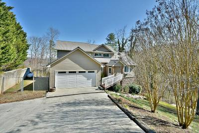 Lafollette Single Family Home For Sale: 354 Turkey Cove Lane