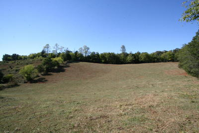 Greenback Residential Lots & Land For Sale: Crumley Rd