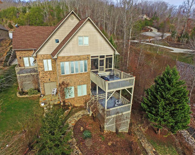 Meigs County, Rhea County, Roane County Single Family Home For Sale: 176 Bluegreen Way