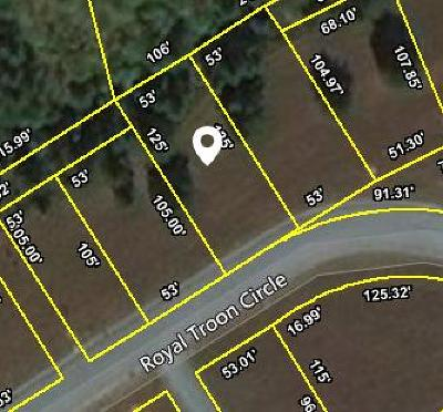 Anderson County Residential Lots & Land For Sale: 34 Royal Troon Circle