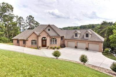 Alcoa, Friendsville, Greenback, Knoxville, Louisville, Maryville, Rockford, Sevierville, Seymour, Tallassee, Townsend, Walland, Lenoir City, Loudon, Philadelphia, Sweetwater, Vonore, Coker Creek, Englewood, Madisonville, Reliance, Tellico Plains Single Family Home For Sale: 102 Coyatee Point Drive