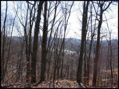 new tazewell Residential Lots & Land For Sale: L-590 Whistle Valley Roads