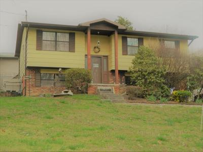 Oliver Springs Single Family Home For Sale: 640 Sleepy Hollow Rd