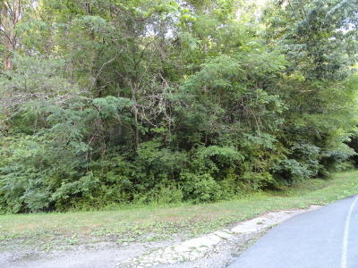 Anderson County Residential Lots & Land For Sale: Melton Hill Drive